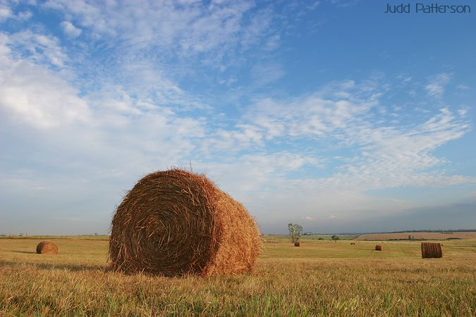 Freshly bailed hay, Saline County, Kansas, United States