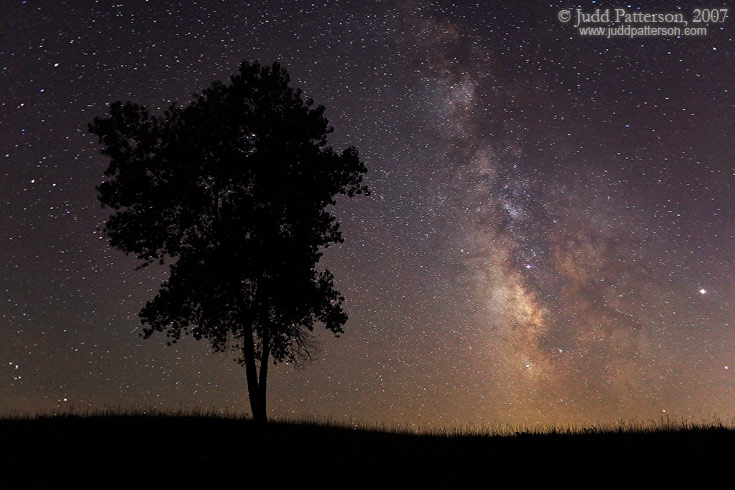 Search the Heavens, Konza Prairie, Kansas, United States