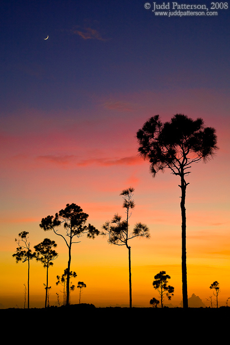 Moonrise, Everglades National Park, Florida, United States