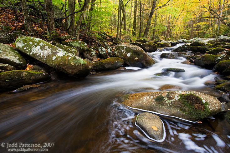 Smokies Stream, Great Smoky Mountains National Park, Tennessee, United States