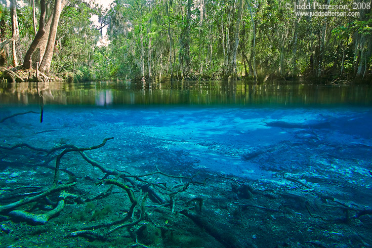 Crystal Spring Florida